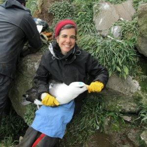 Nevitt_GAN with Blackbrowed albatross